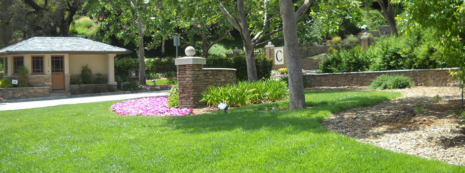 landscaping services, creating unforgettable first impressions